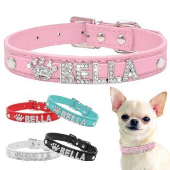 Dog's Bella Crystal Collar