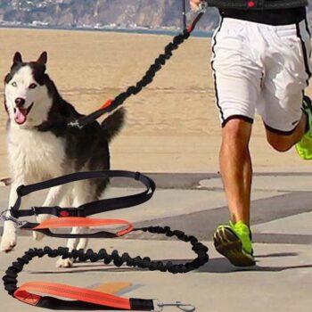 Elastic Dog's Leash with Waist Rope