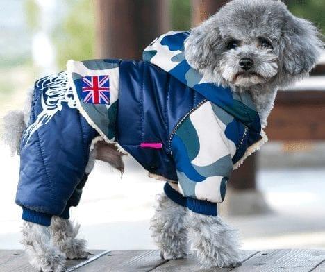 Dog's Casual Warm Jacket