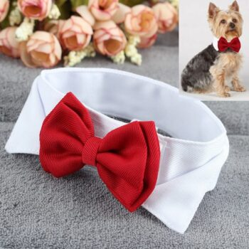 Elegant Bow Tie for Pets