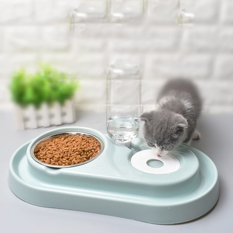 Cat Water And Food Feeder