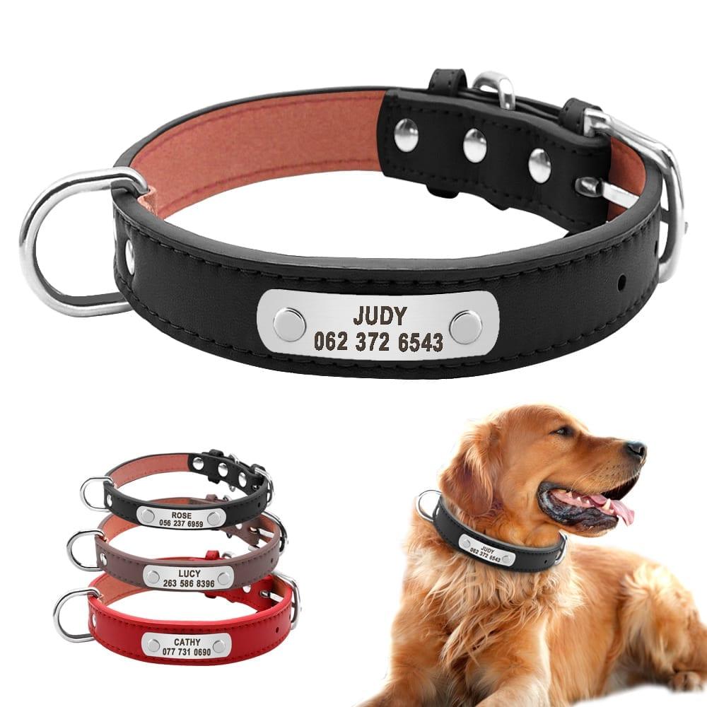 Dog Collar with Customizable ID Tag