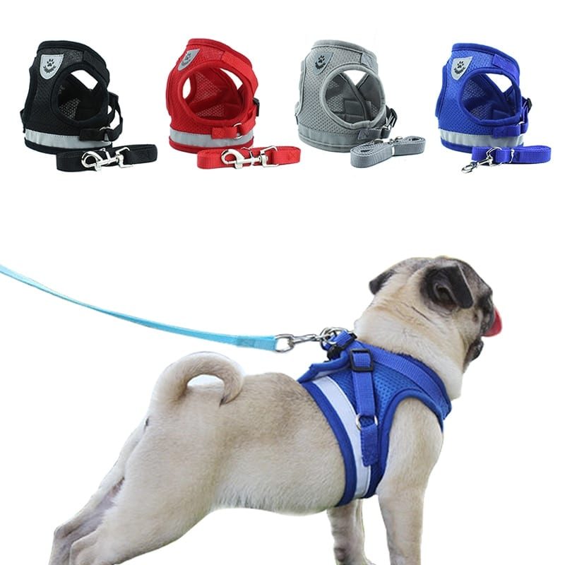 Item Type: Harness Material: Polyester Color: Black, Blue, Red, Grey