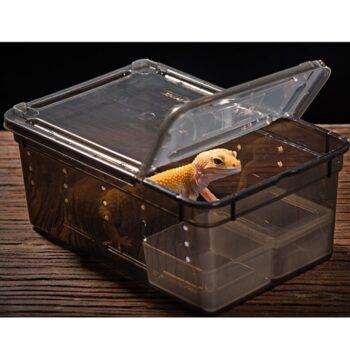 Plastic Frosted Terrarium For Reptiles b