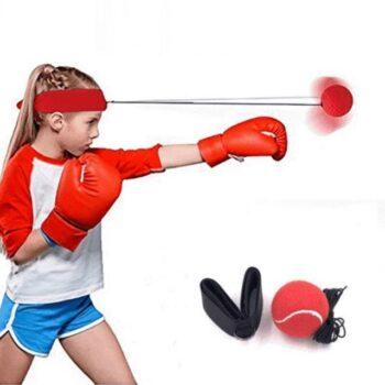 The Training Kit – Reflex Ball